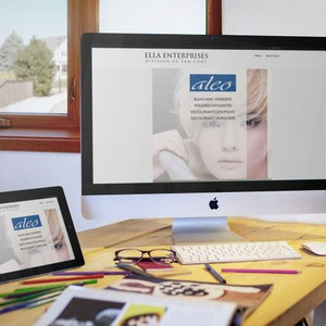 Hair Bleach Powder – WordPress Company Website